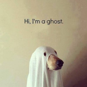 Doggy Ghost