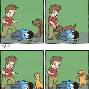 Difference between Dogs n Cats