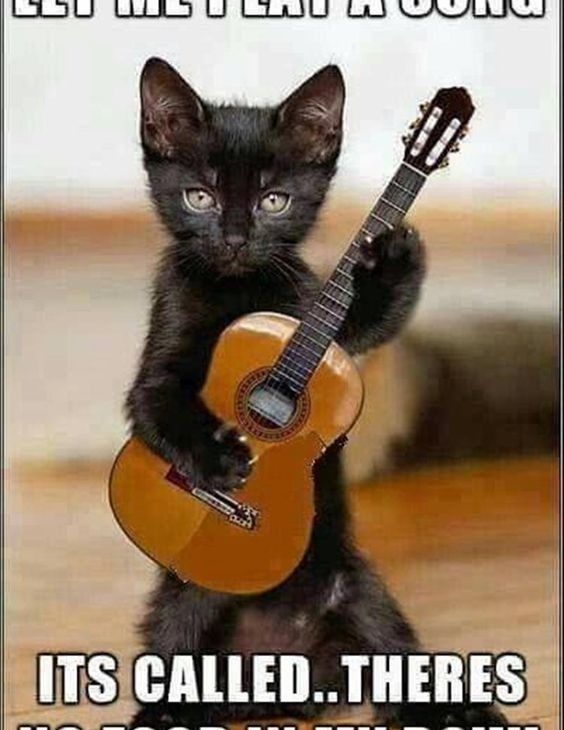 Play A Song