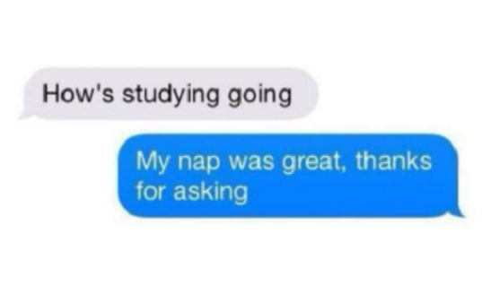 How's Studying Going