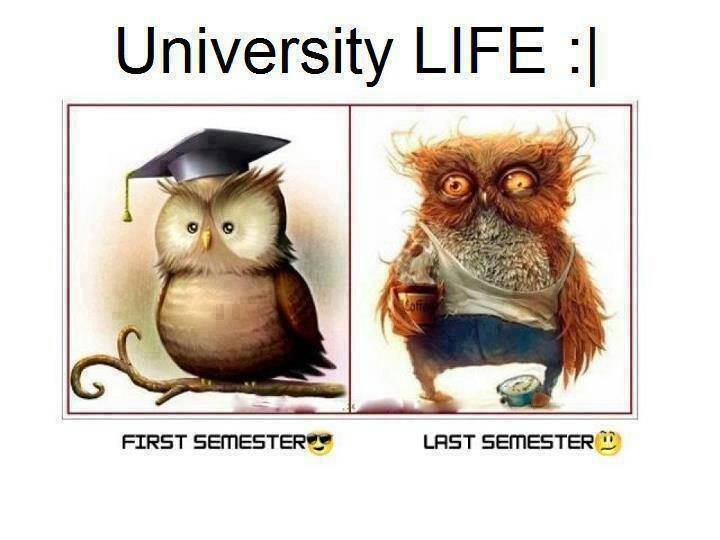 funny college life College life memes updated daily, for more funny memes check our homepage.