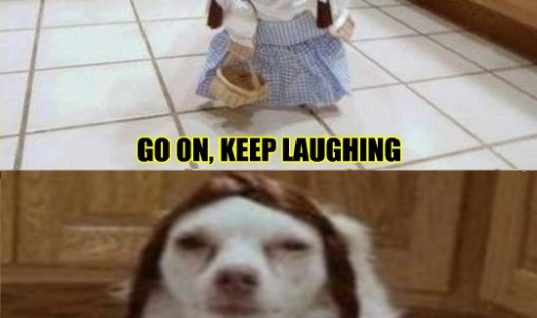 Go on, Keep laughing