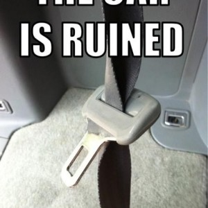 The_car_is_ruined_20140301_Thecarisruined.jpg