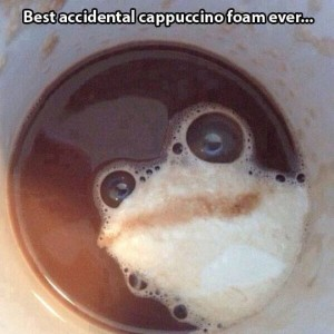 Frog in Coffee