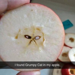 Meanwhile cutting apple