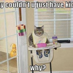 Treating cats as kids