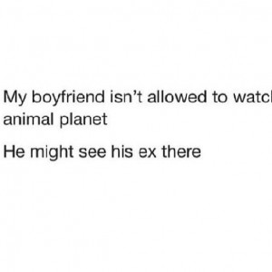 Not allowed for animal planet