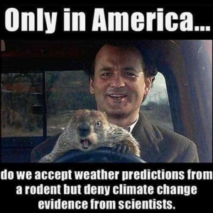 Weather Predictions from Rodent