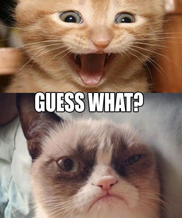 Grumpy Cat Quotes Related Keywords Amp Suggestions Grumpy Cat