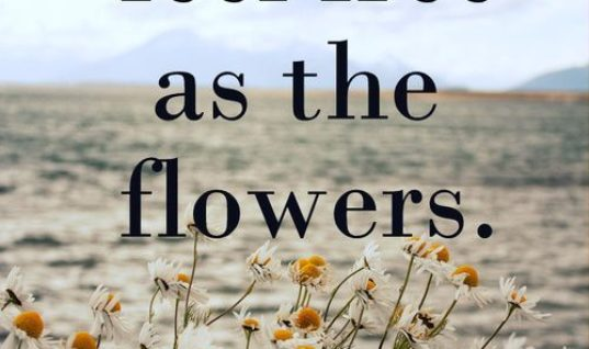 Free As The Flowers