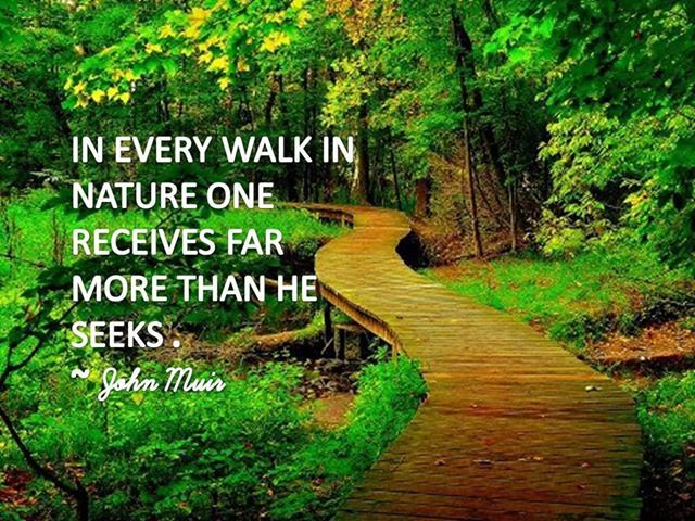 Walk In The Nature Funny Pictures Quotes Memes Jokes
