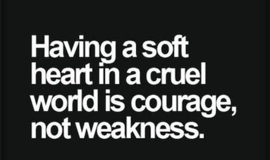 A Soft Heart Is Courage