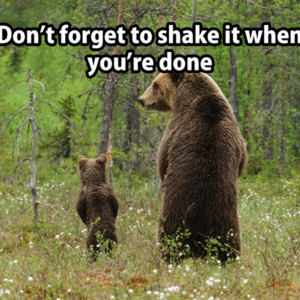 Don't Forget To Shake It