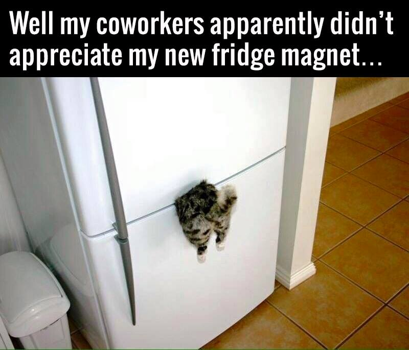 Image Result For Magnet Table