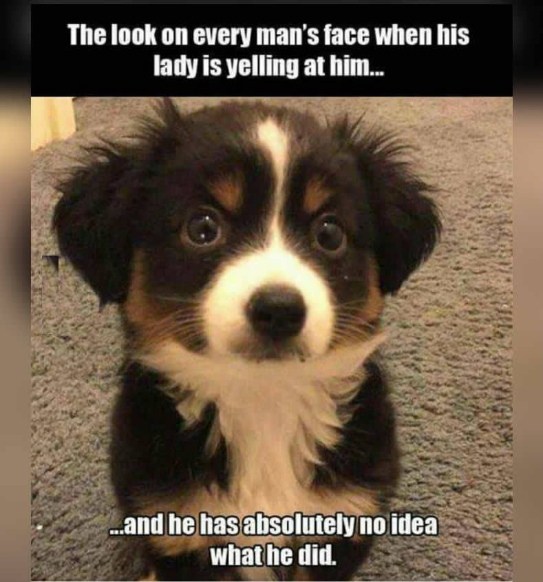 Every Man's Face