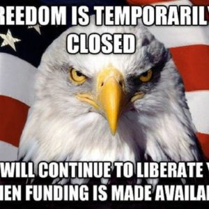 Freedom Is Temporarily