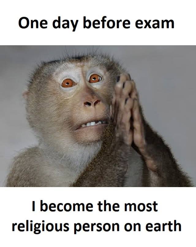 Before Exam Funny Pictures Quotes Memes Jokes
