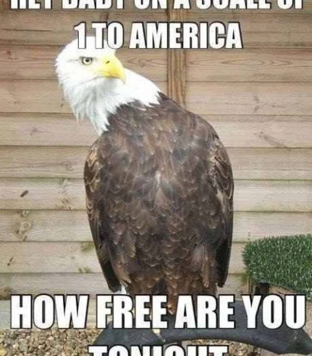 How Free Are You