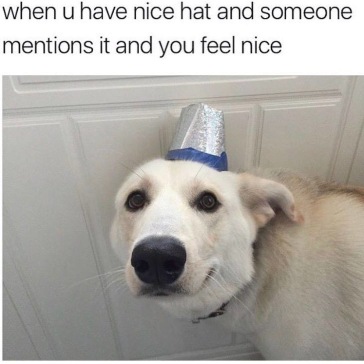 Have A Nice Hat