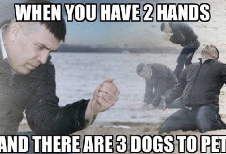 Have Two Hands