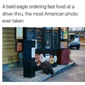 Most American Photo