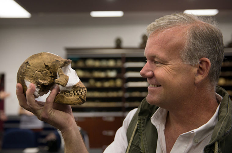 Humans Have a New Ancestor: How Homo Naledi is Another Link In Evolutionary Chain