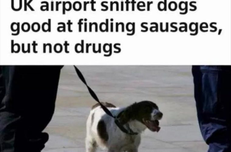 Sniffing Sausages